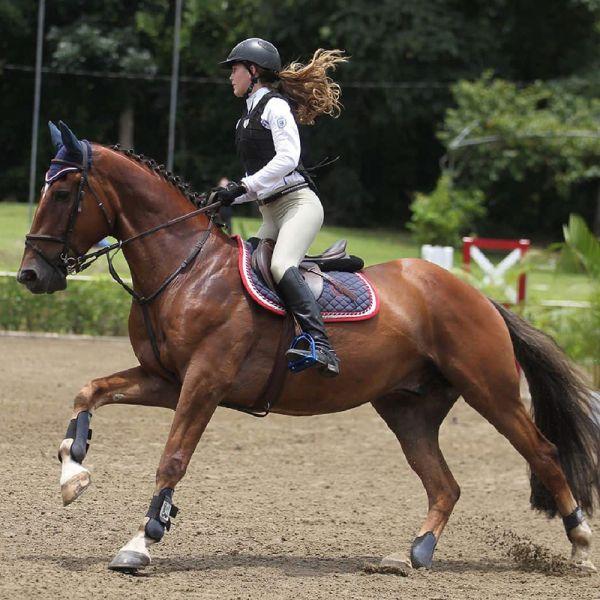 Equitación - Club Hípico Mendiolaza